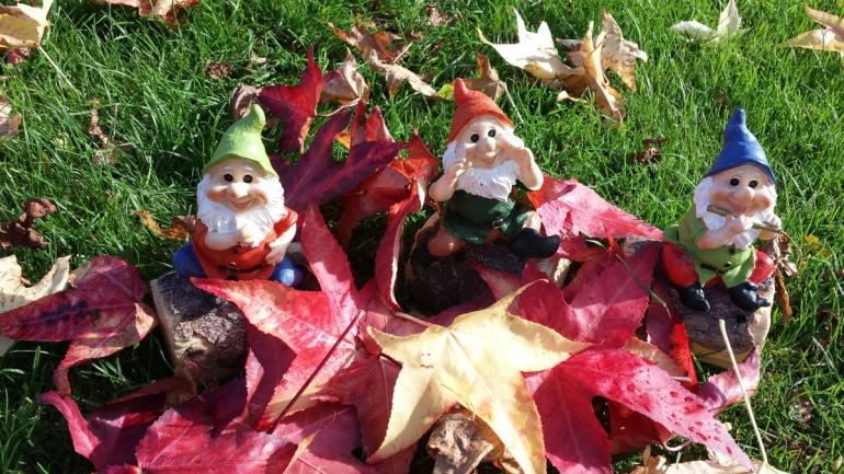 ¿Conoces la historia de los gnomos en el jardín?