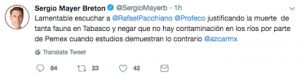 Sergio Mayer acude a la Profeco por muerte de manatíes