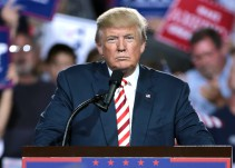 Trump le dice a AMLO que trabajarán muy bien juntos