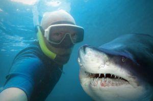 Una selfie ¿Vale más que tu vida?