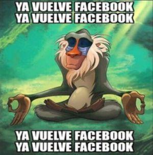 ¿Te quedaste sin Facebook?