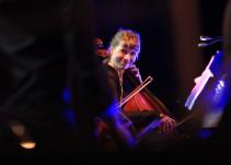 Festival de Música de Morelia: #MiFestival a días de la clausura