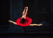 """Elisa Carrillo nos llena de orgullo; recibe premio """"Alma de la Danza"""""""