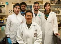 Héroes sin capa: científicos mexicanos eliminan Virus del Papiloma Humano