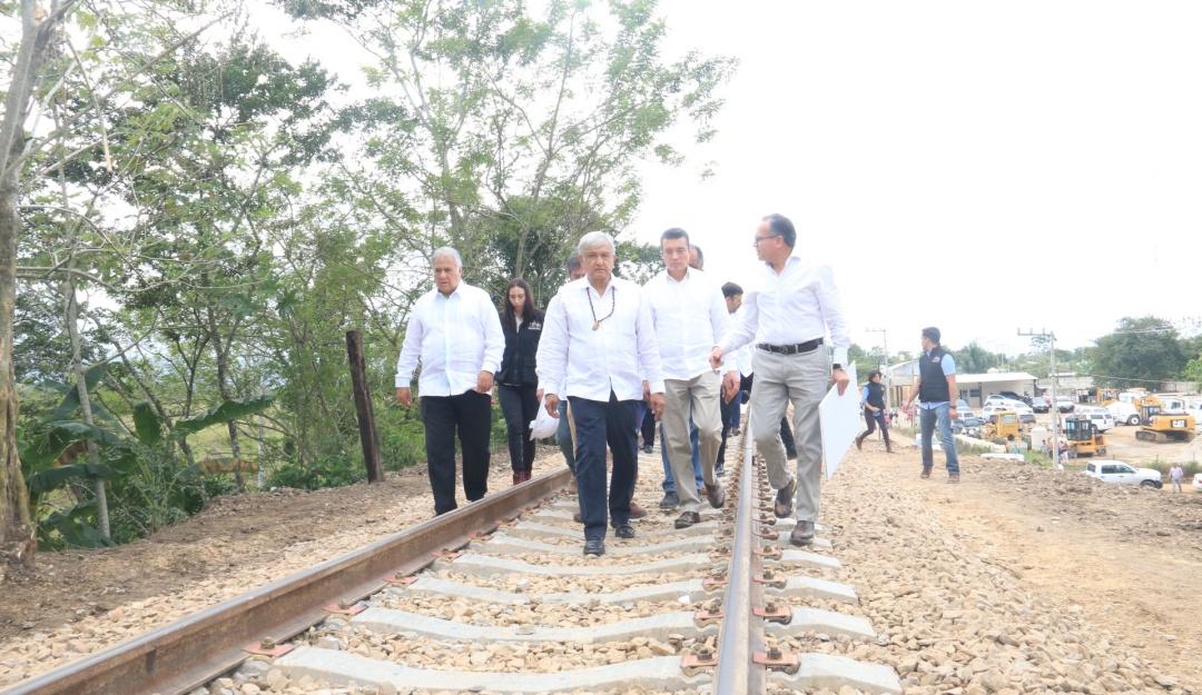 Tren Maya debe suspenderse hasta conocer impacto ambiental : IMCO