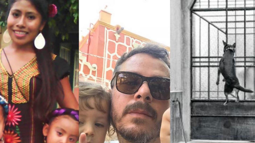 Oscar 2019: Ellos tenían una vida normal hasta que se cruzaron con Roma