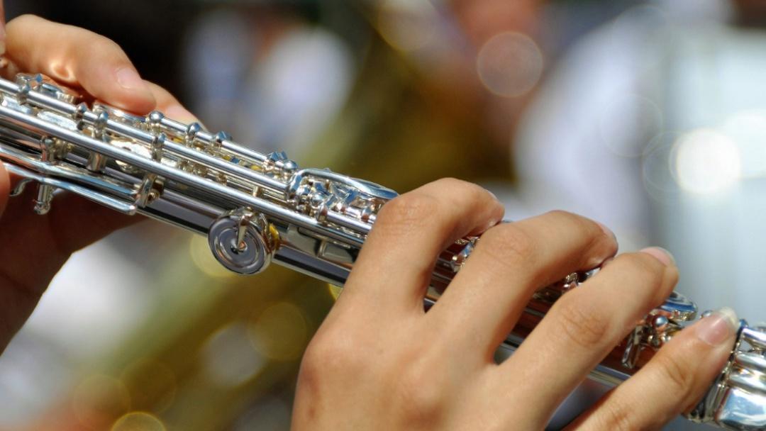 Clases de música: Flauta transversa