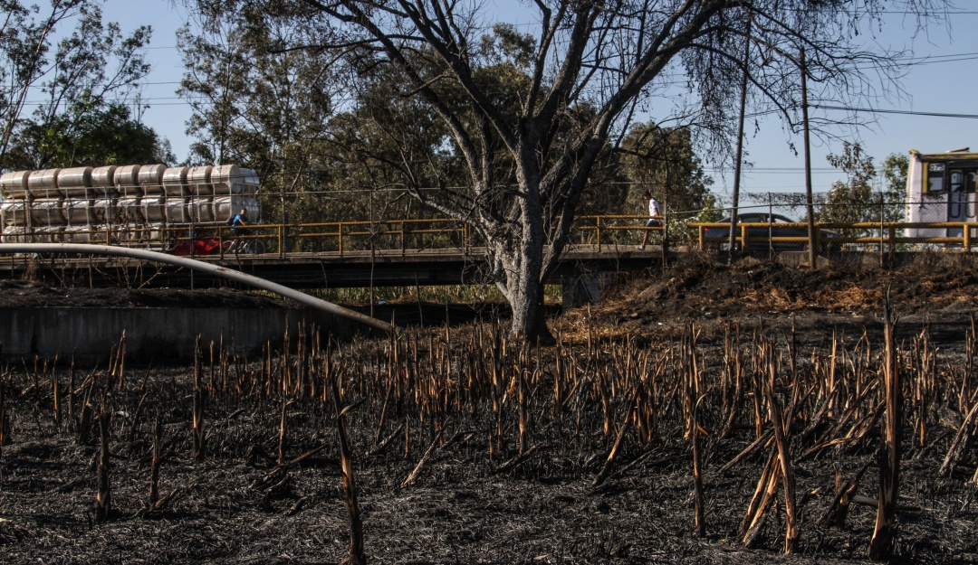 Se incendian pastizales de Xochimilco por tercera ocasión en 15 dias