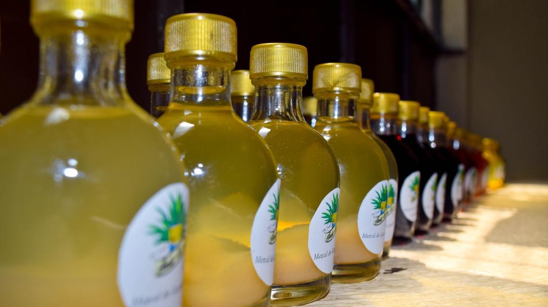 La bebida perfecta es de México; el mezcal no causa cruda