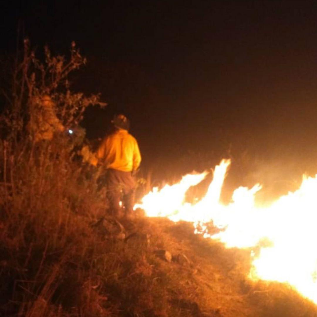 Sofocan incendio en el Colli