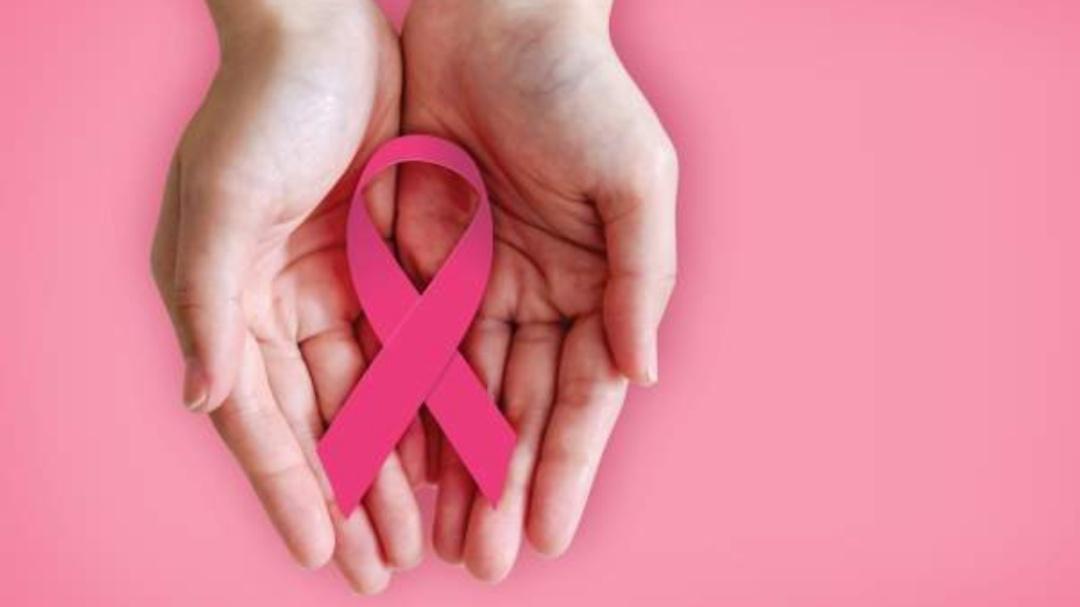 El libro del cáncer de mama