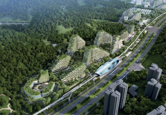 Ciudad Bosque; China crea el primer lugar forestal del mundo