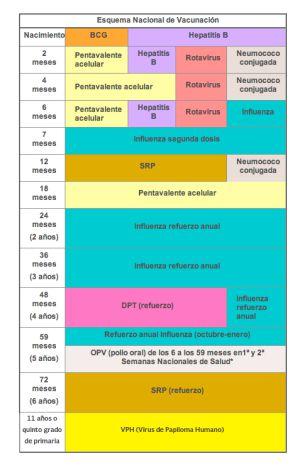 Sarampión y las enfermedades que se pueden prevenir con vacunas en México