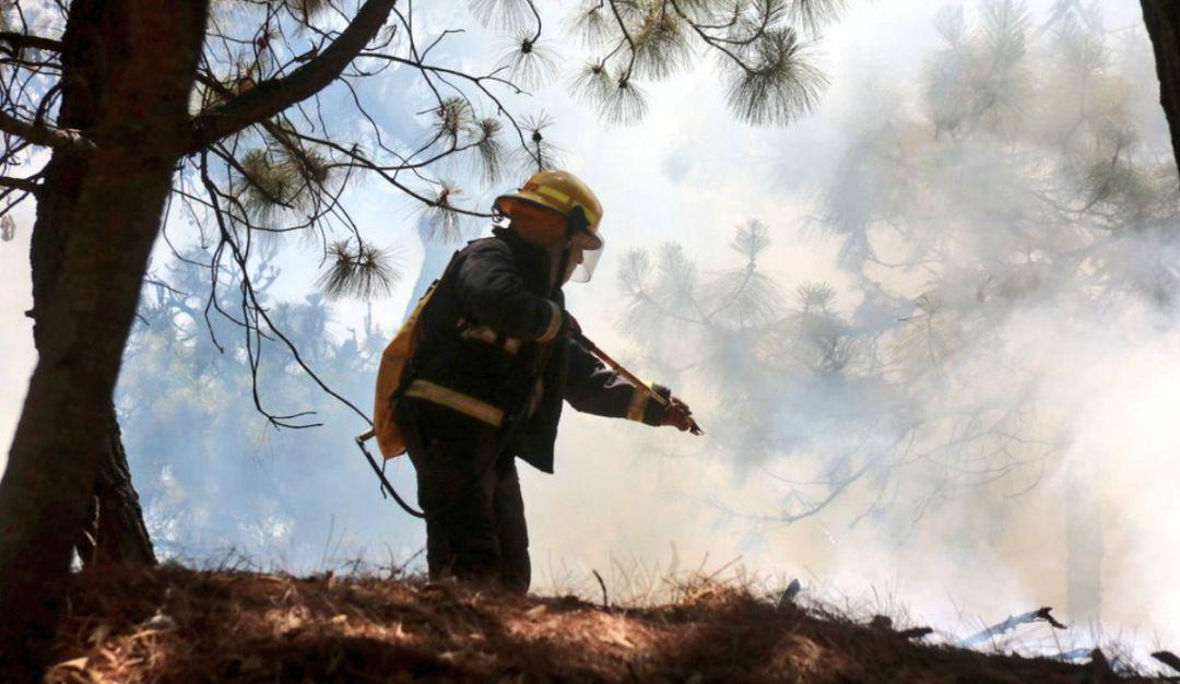 Se registra incendio en el bosque del Nixticuil