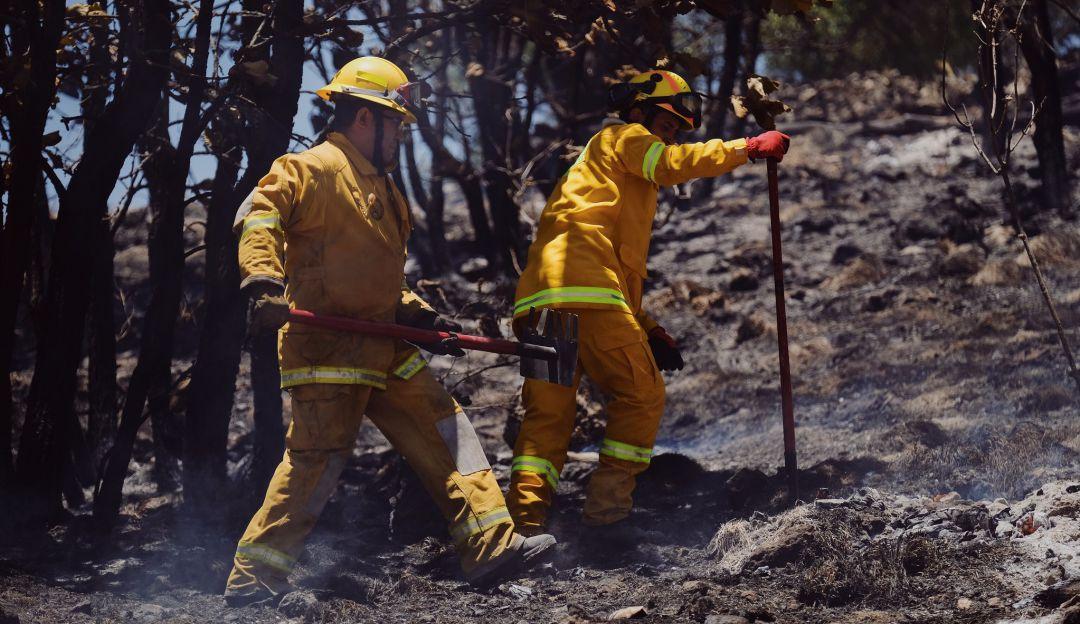 Afectadas mil 900 hectáreas por incendio en La Primavera