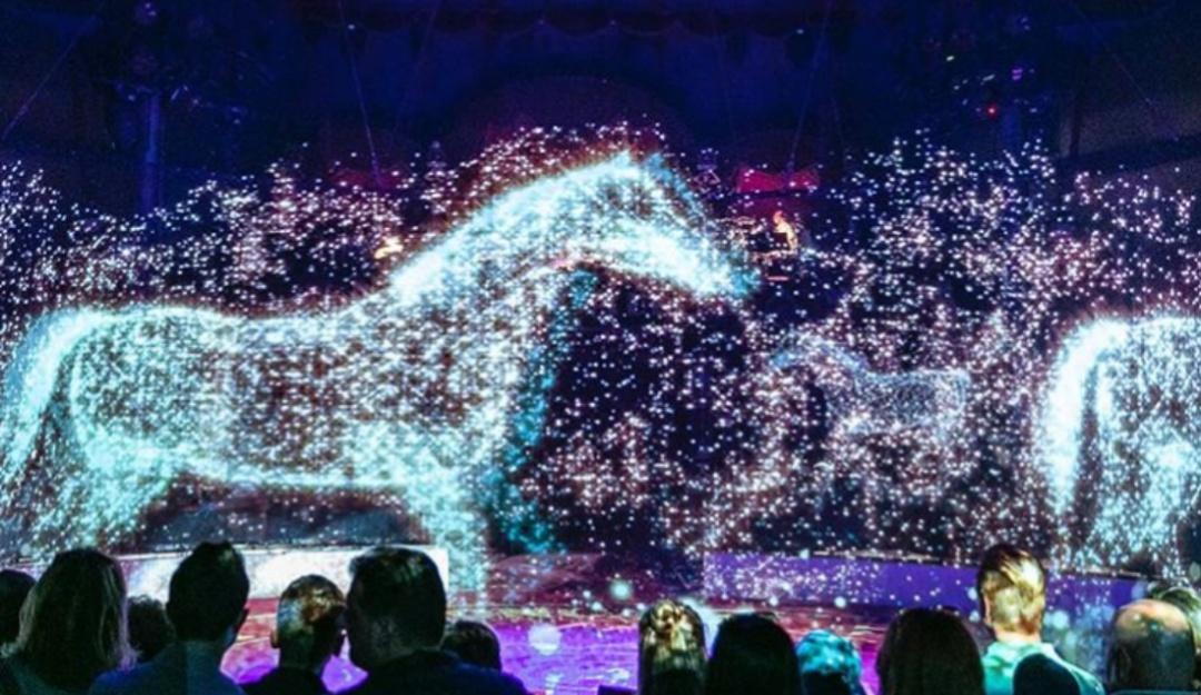 Resultado de imagen para circo alemania hologramas animales