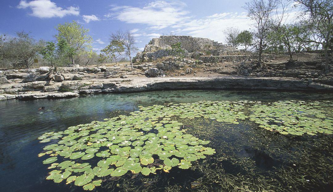 Cenotes de Chen-Ha en Yucatán ¡Usados como basureros!