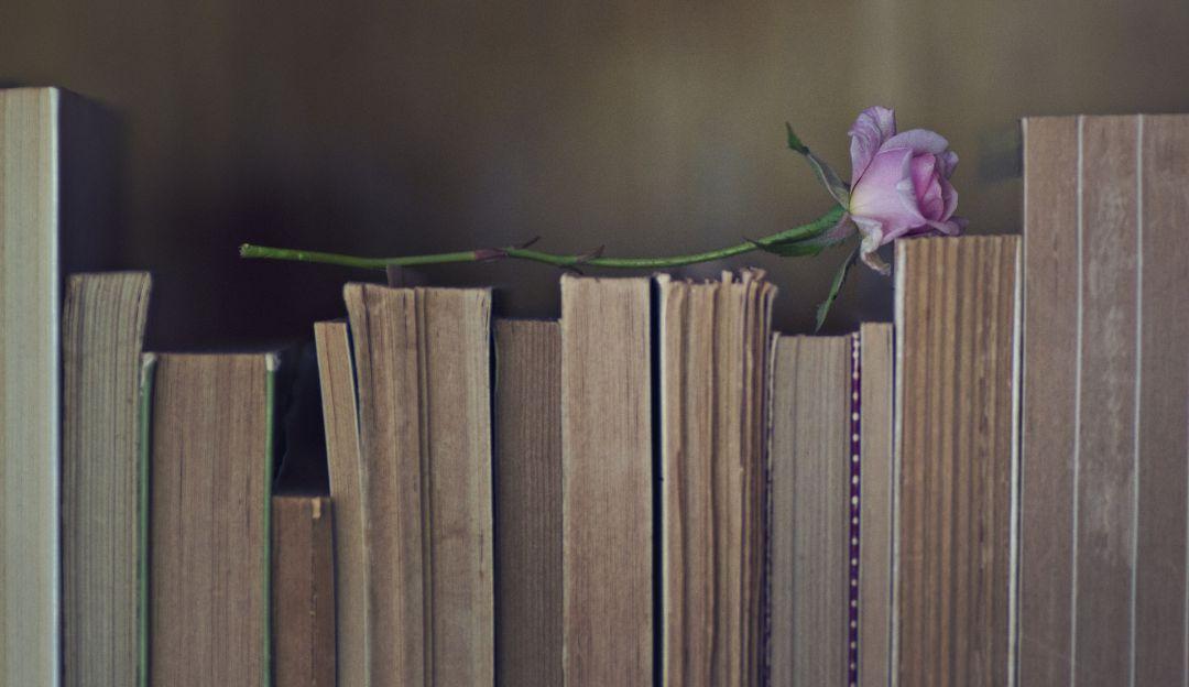 Día Mundial del Libro y del Derecho de Autor ¡Conoce su origen!