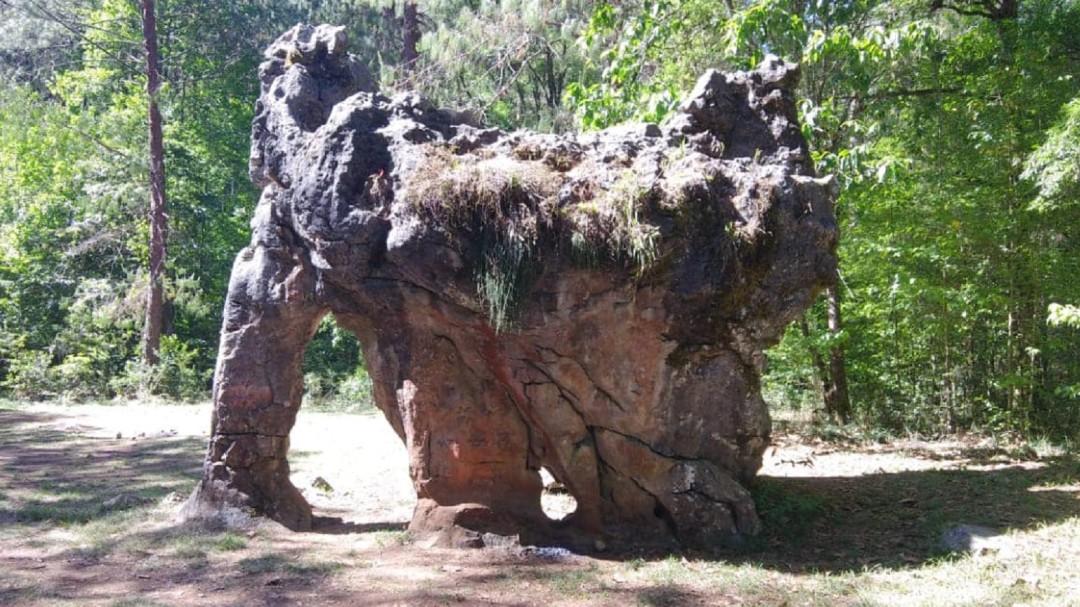 """Familia firma """"Piedra del Elefante"""" con miles de años y la estropea"""