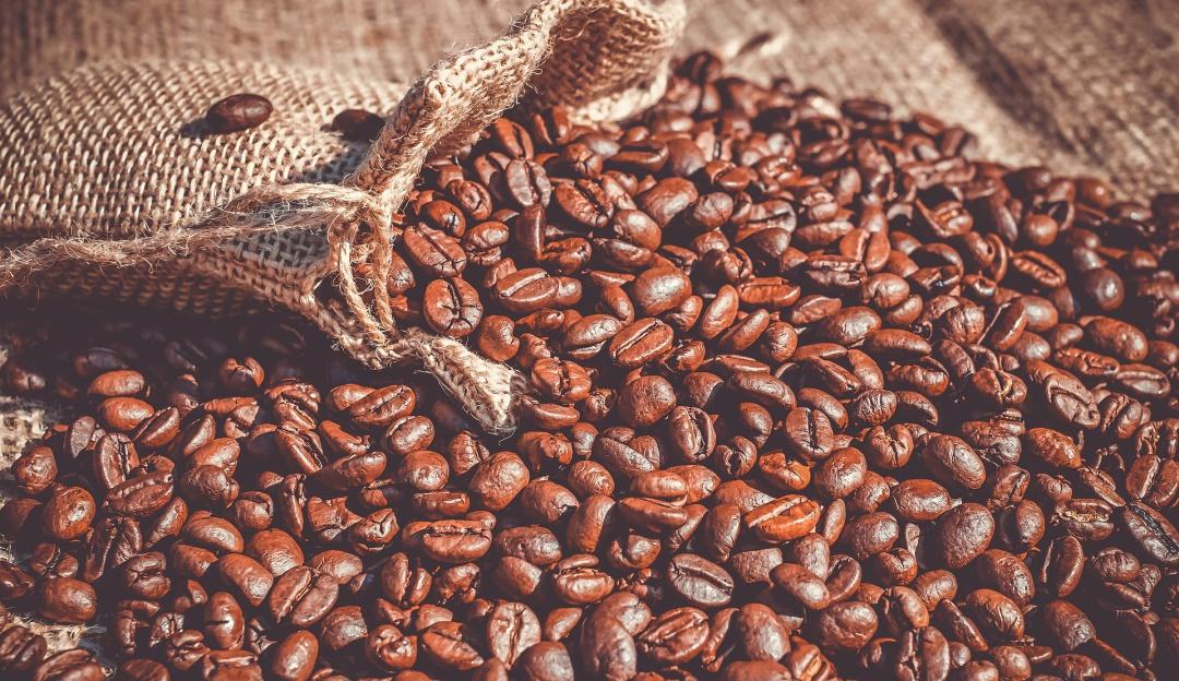 ¿Por qué el café mexicano podría enfrentar una de sus peores crisis?