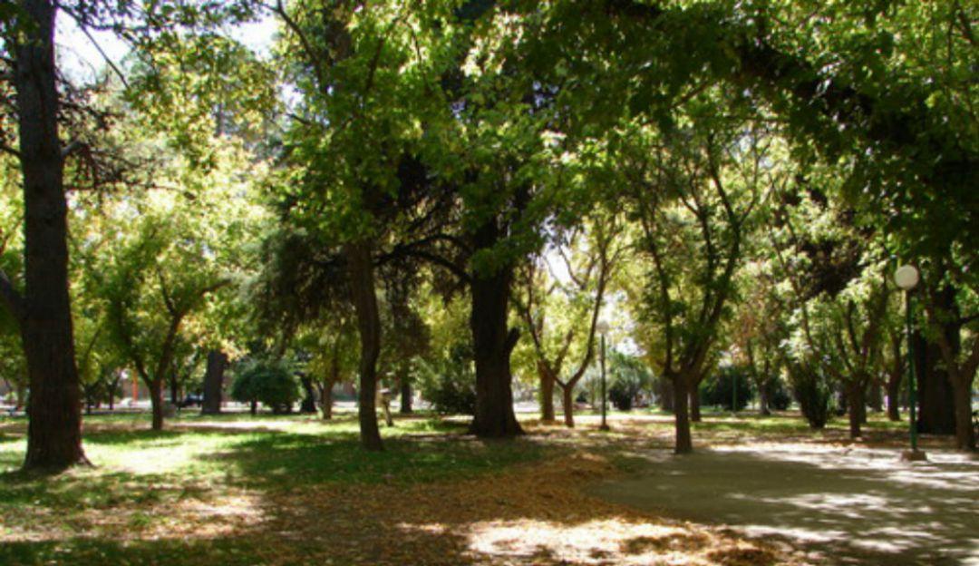 Asociaciones mantendrán lucha contra obra aledaña al parque San Rafael