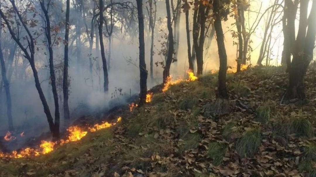 No habrá cambios al uso de suelo de zonas afectadas por incendios: Seder