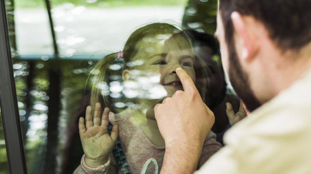 BBmundo: La paternidad después del divorcio