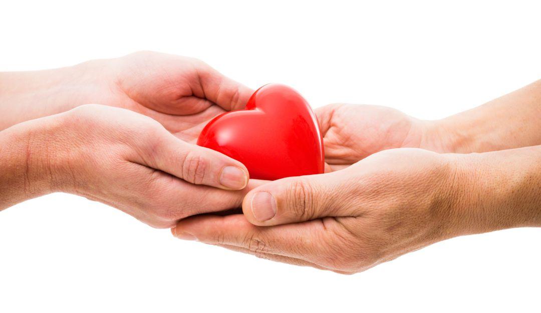Conferencia Mitos sobre la donación de órganos y su distribución