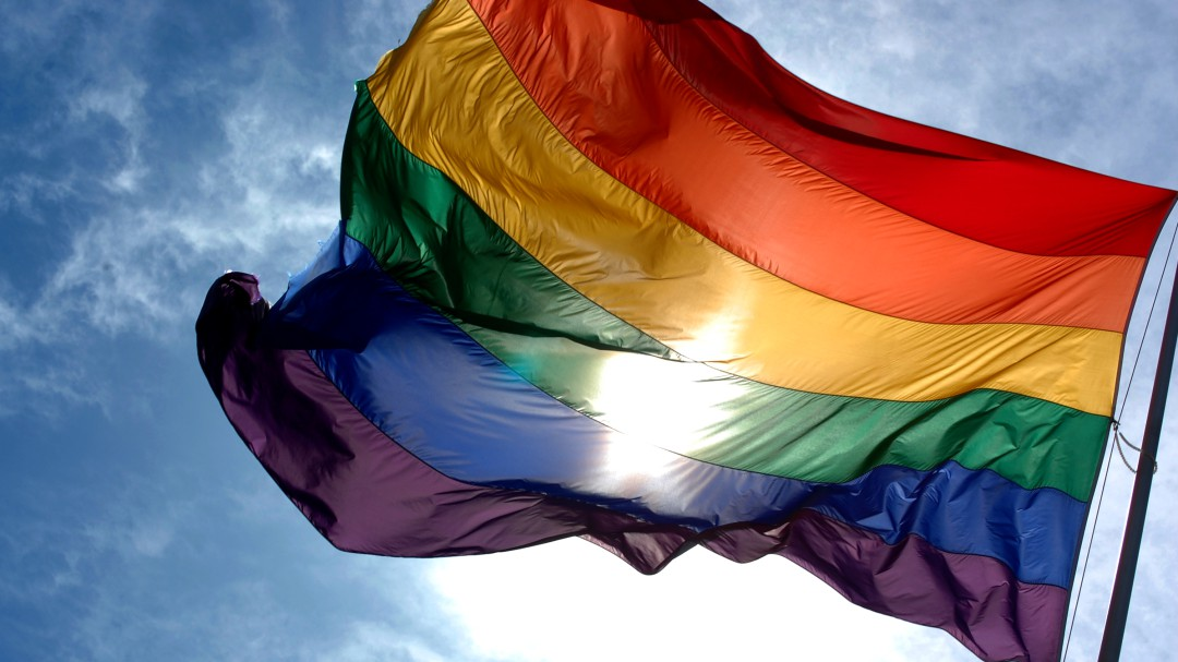 Día Internacional del Orgullo LGBT o Día del Orgullo Gay