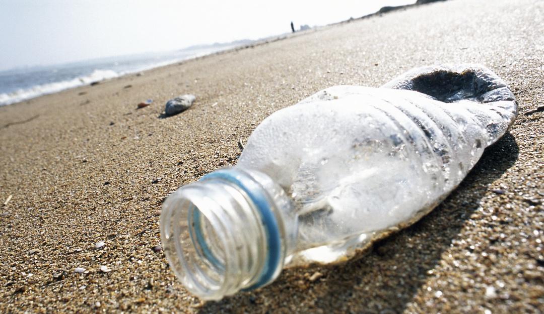Más de 600 buzos rompen récord mundial al limpiar una playa