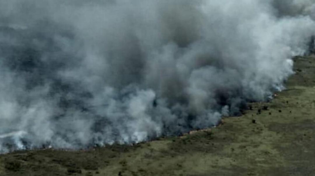 Lamentable incendio consume más de 2 mil hectáreas de reserva natural en QR