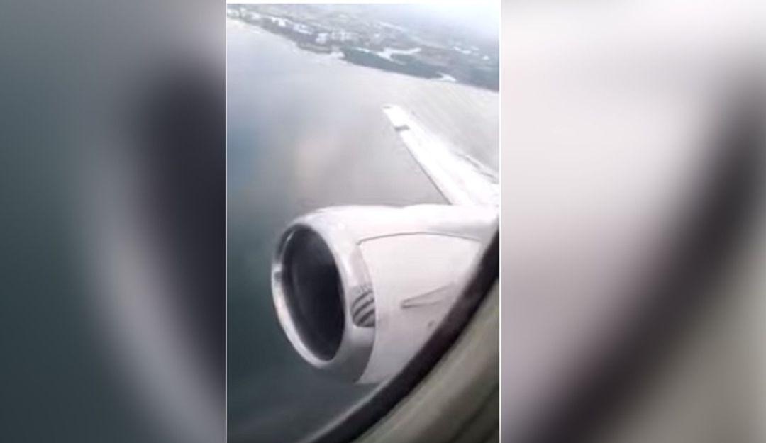 Vaya susto; Ave se mete a turbina de avión en pleno vuelo