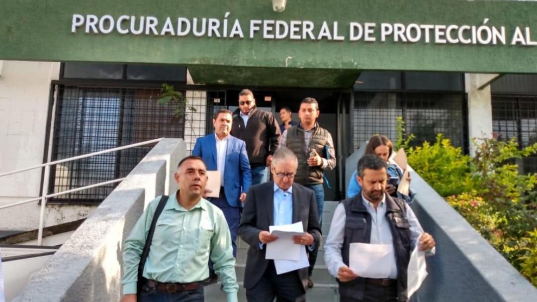 Presentan denuncia por la tala de árboles en municipios de Jalisco