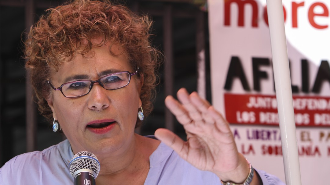 El 20 de noviembre se elige la nueva dirigencia de Morena: Bertha Luján