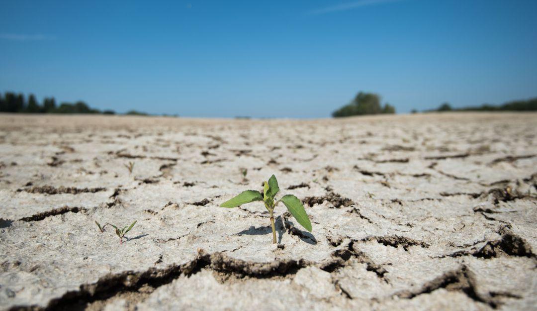 Fuerte crisis; nos estamos quedando sin agua