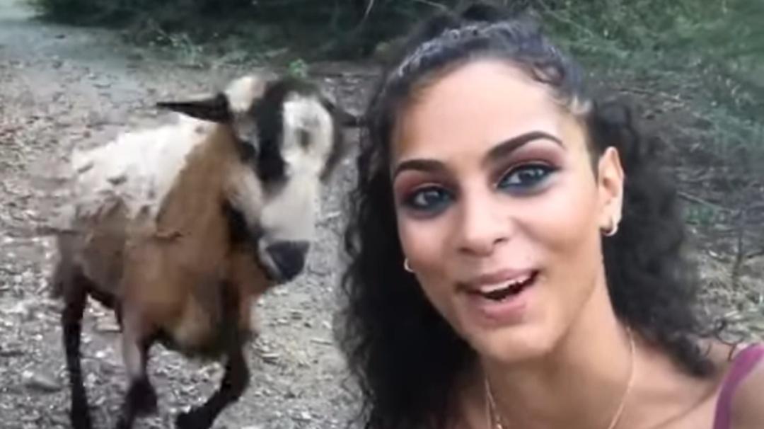 Ella sólo quería una selfie y una cabra la recibe con tremendo 'cabezazo'