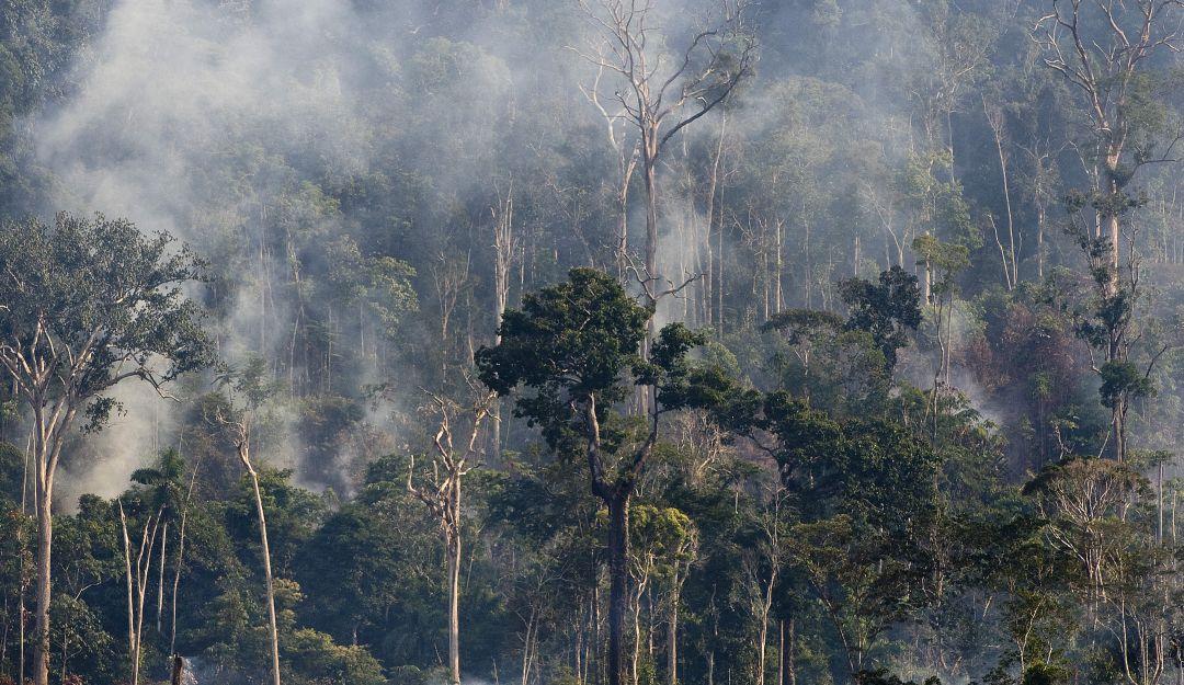 Incendio registrado en la región amazónica al norte de Brasil el 29 de noviembre de 2009