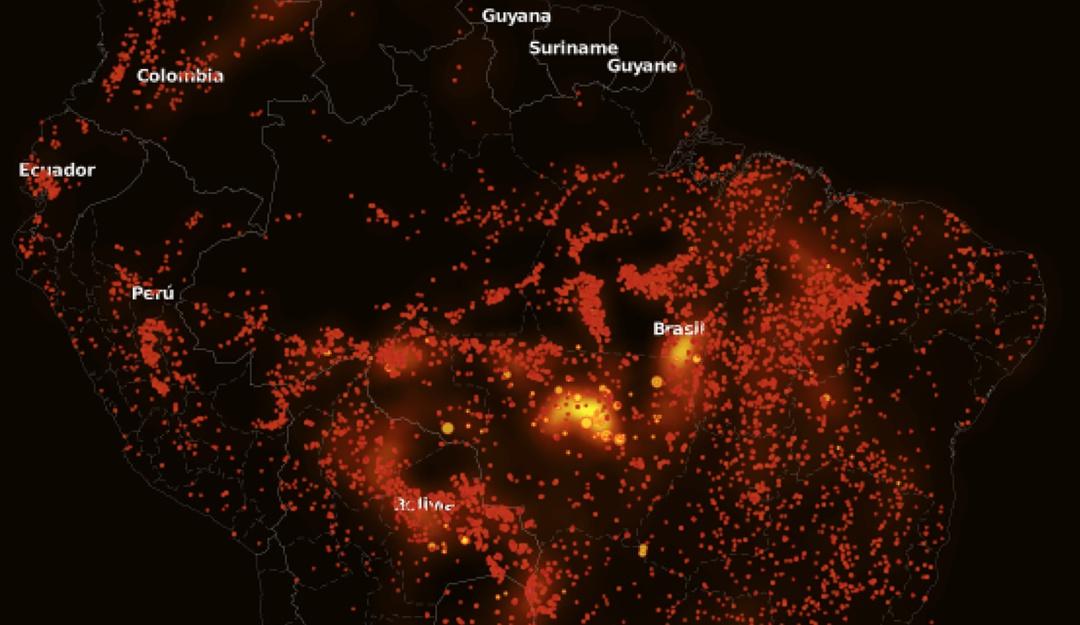 Incendio en el Amazonas: conoce la magnitud de la tragedia