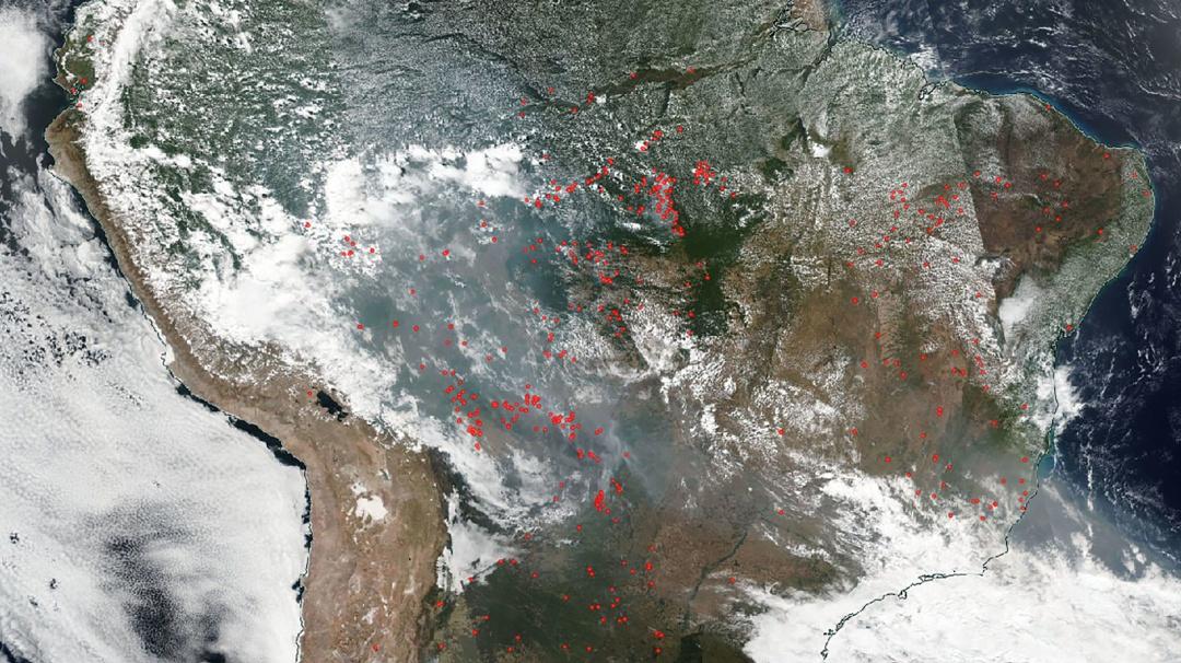 ¿Caíste? Estas fueron las fotos fake del incendio en el Amazonas