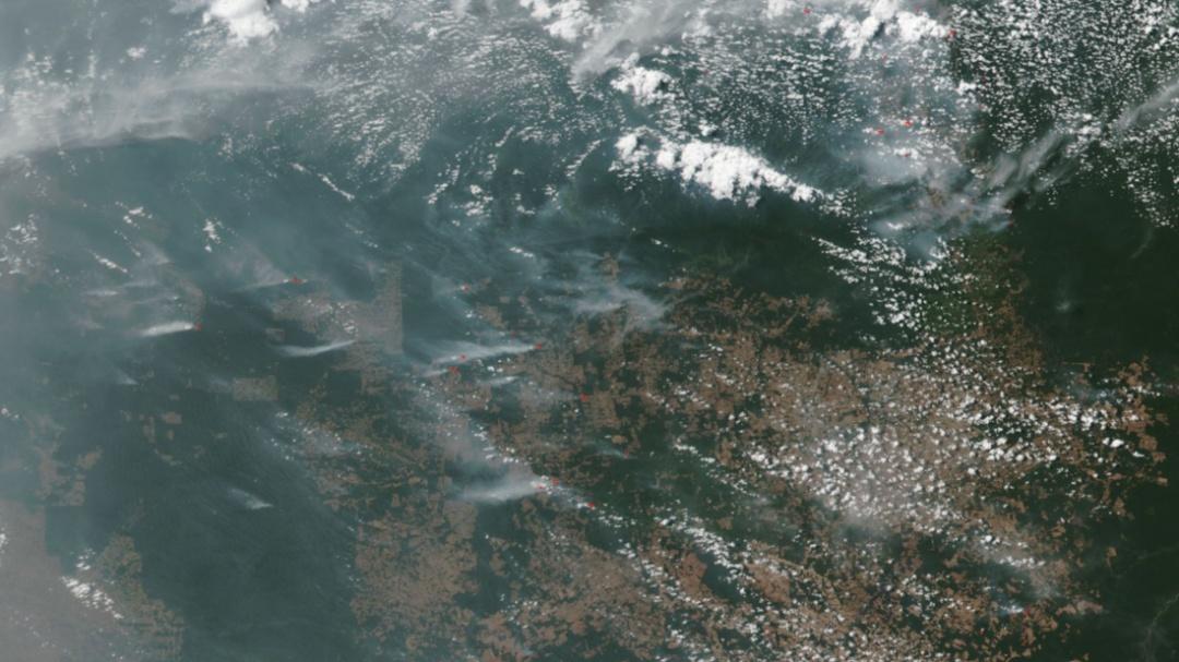 ¿Qué está pasando en la Amazonía?
