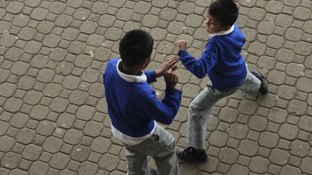 Alerta Consejo Ciudadano ante el acoso escolar en nuevo ciclo