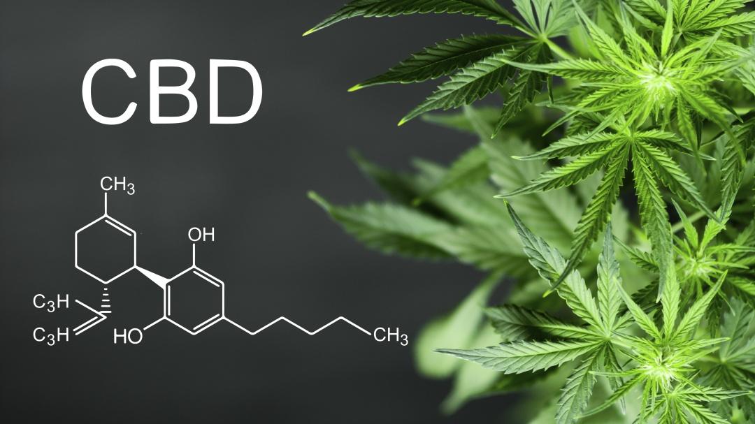 Lo que debes saber de la marihuana