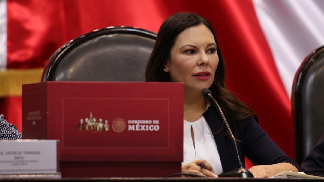 Ley de Amnistía es muy noble: Laura Rojas