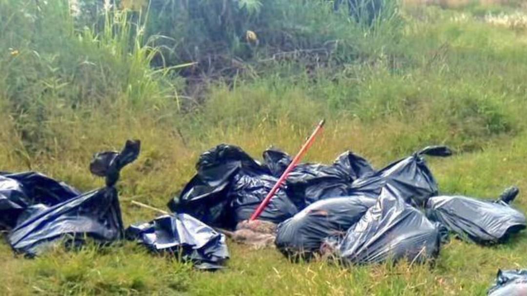 Localizan 17 bolsas con restos humanos en Jalisco