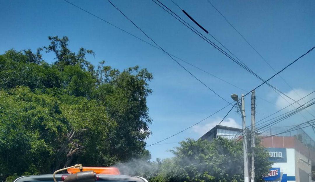 Vigilan colonias donde proliferan casos de dengue