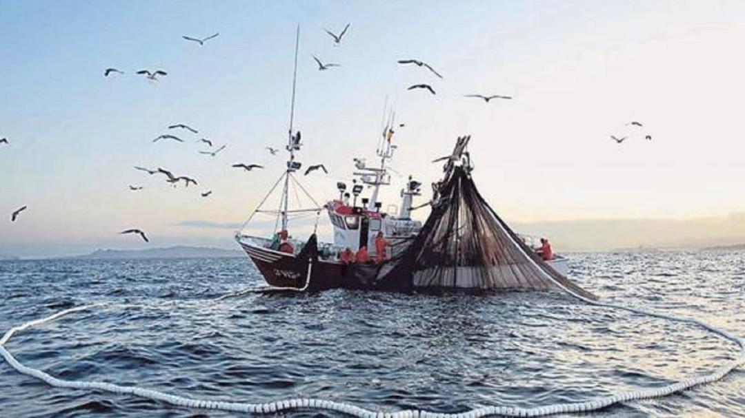 INAI abre datos pesqueros a Global Fishing Watch