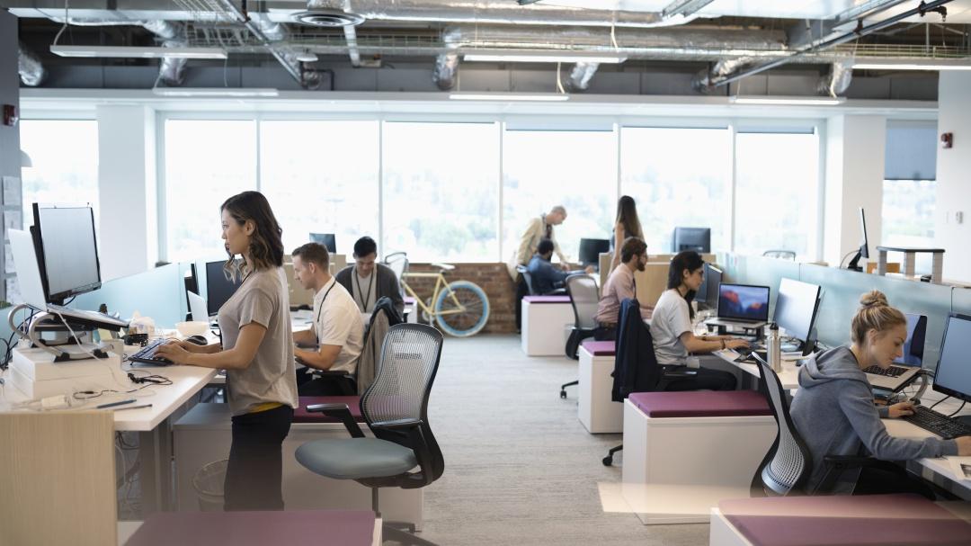 Impostores en la oficina: cómo descubrir profesionistas que no son