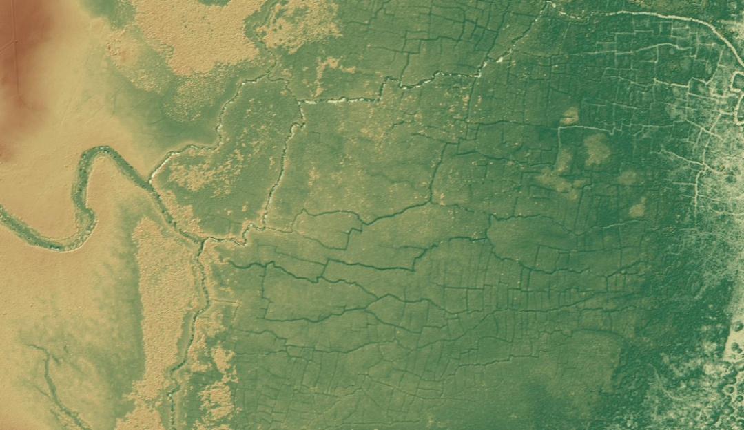 Hallan red de canales mayas que dejó un impacto negativo en los bosques
