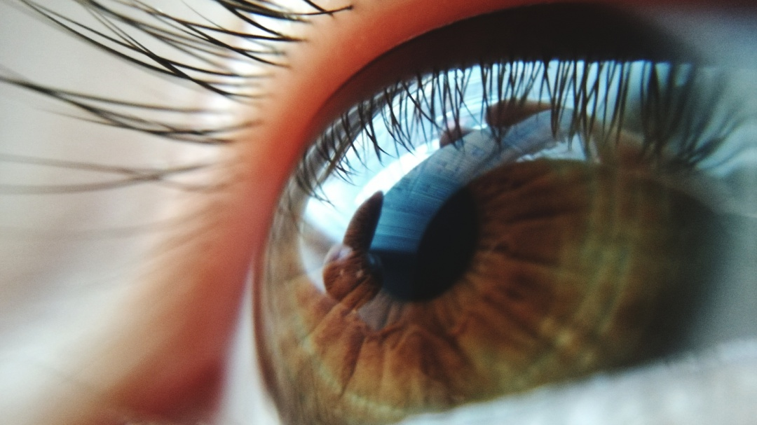 Día Mundial de la Visión: No te quedes ciego