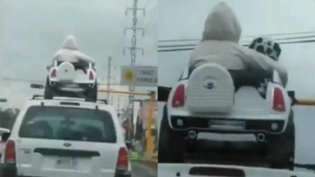 Captan a dos niños viajar en el toldo de una camioneta mientras llovía